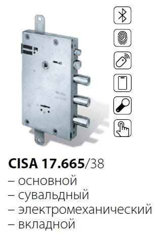 CISA 17.665 /38